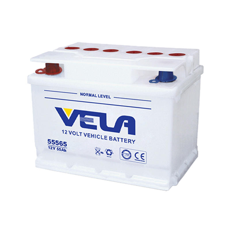 DIN55L 12V 55Ah Dry Charged Motor Vehicle Battery