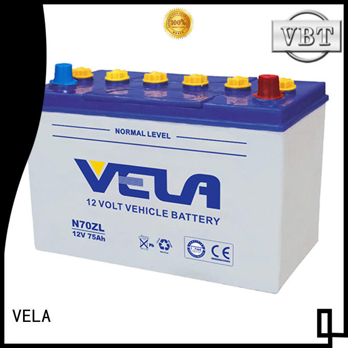 professional dry cell car battery perfect for car