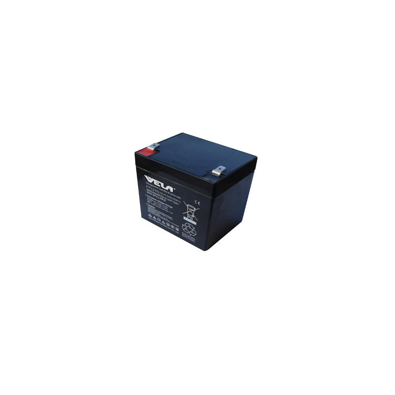 FP1245 12V 4.5Ah VRLA Battery for Jump Starter Battery