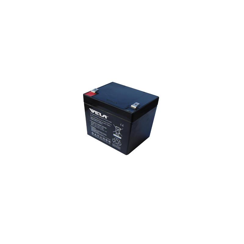 FP1245 12V 4.5Ah Jump Starter VRLA Battery